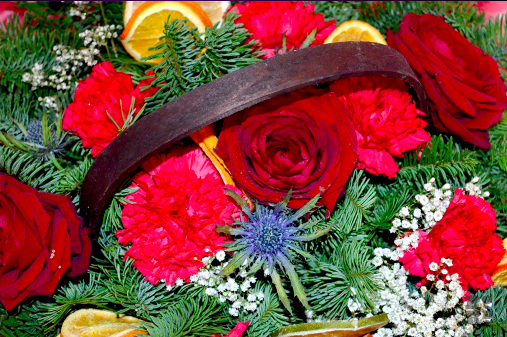 Christmas floral table centrepiece with pine sprigs, red roses and blue thistle.
