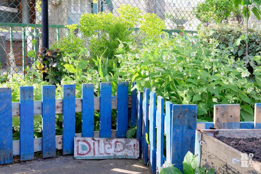 Beds at Cranbrook Community Food Garden