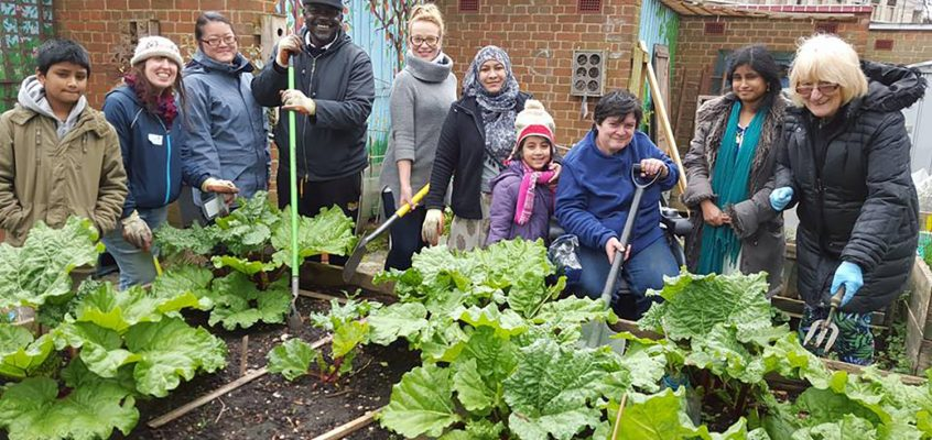 Ready Steady Grow at Cranbrook Community Food Garden