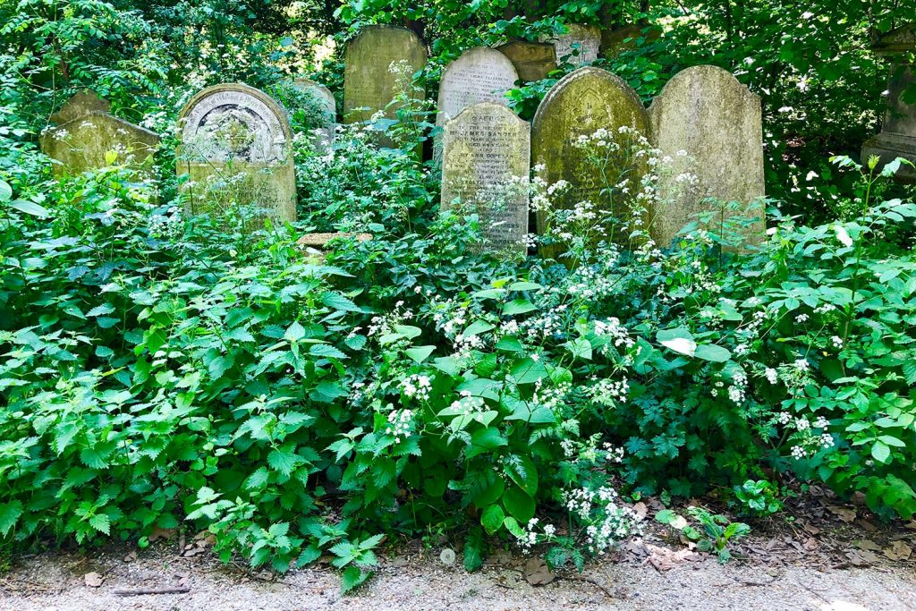 Photograph of gravestones at Tower Hamlets Cemetery Park