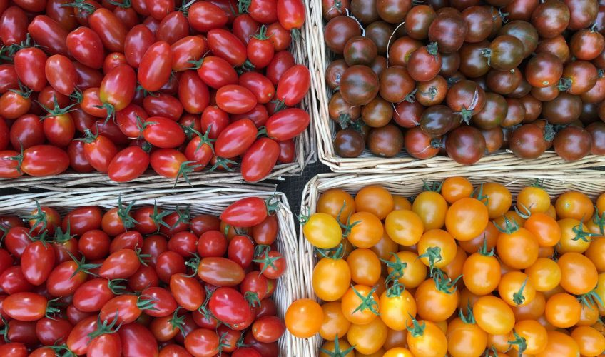 Tomatoes at Victoria Park market