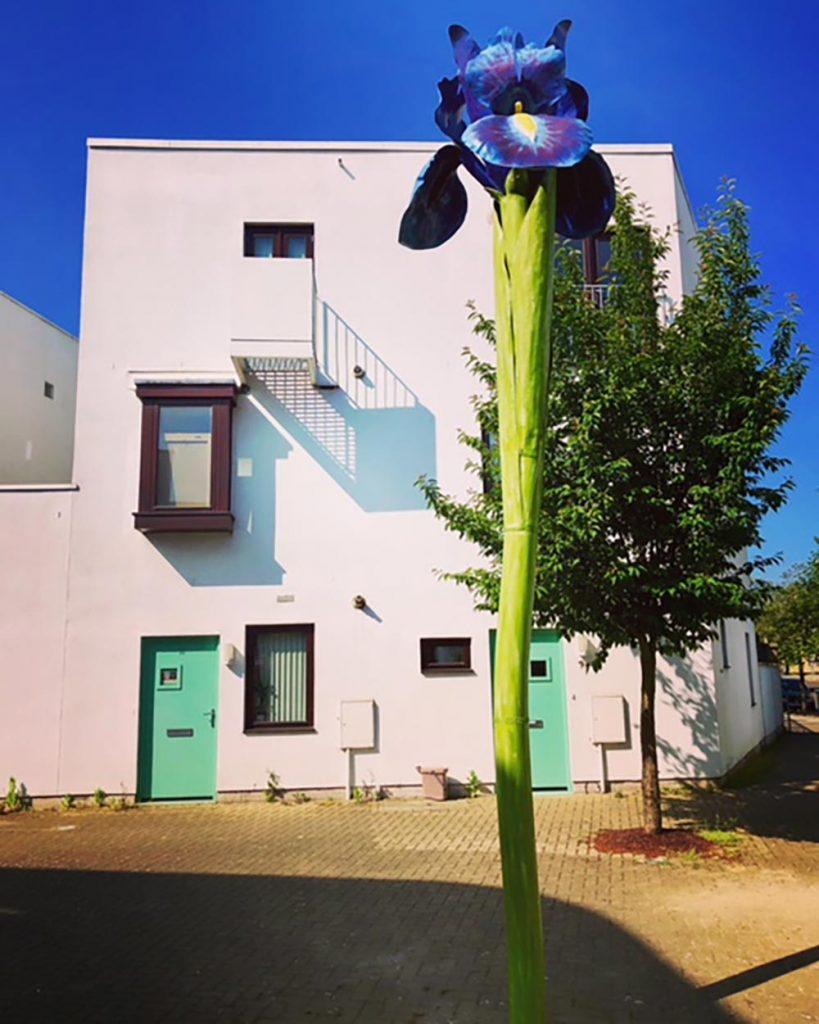 A metal flower on Eden street