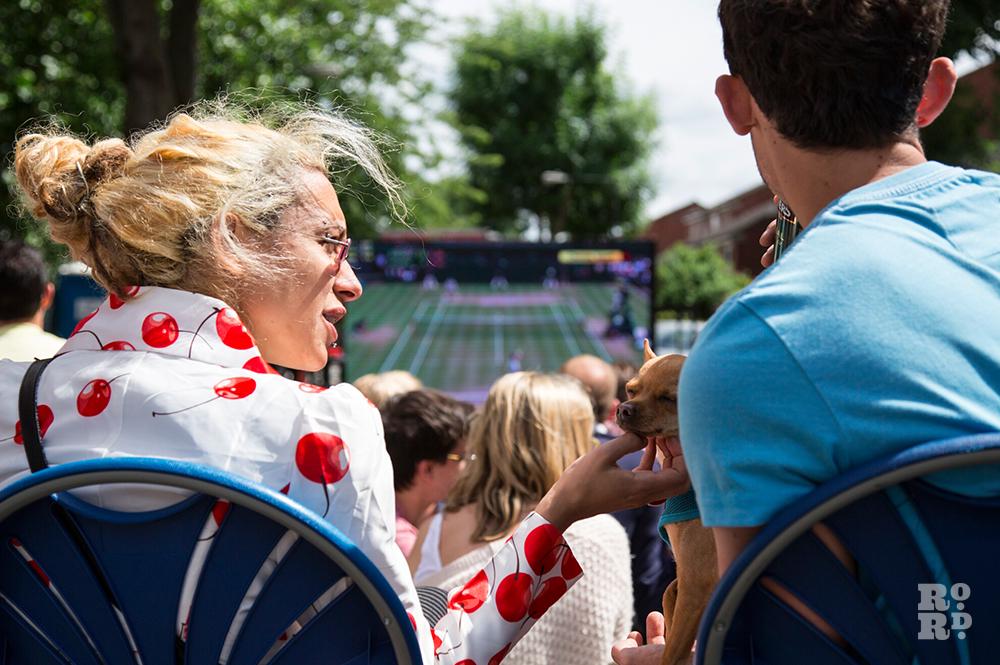 Women in cherry jacket with Chihuahua watching Wimbledon