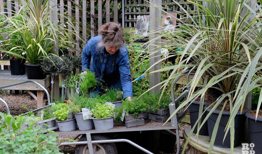 Growing Concerns, a not-for-profit garden centre for local people