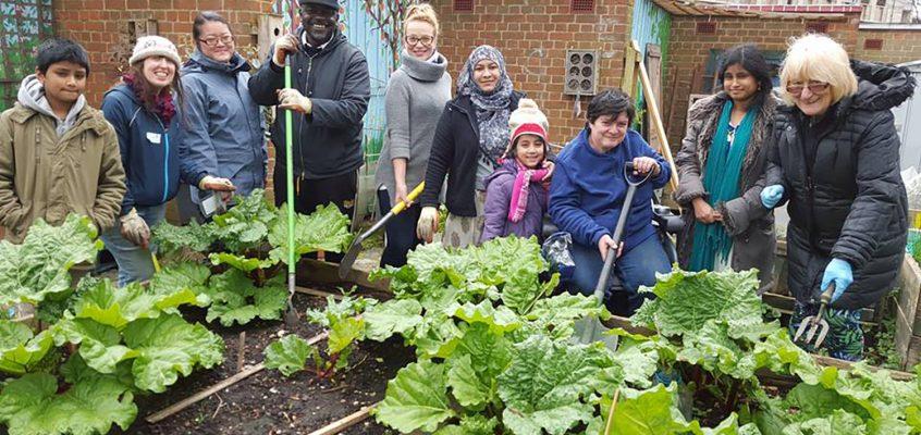 Ready Steady Grow at Cranbrook Community Food Garden