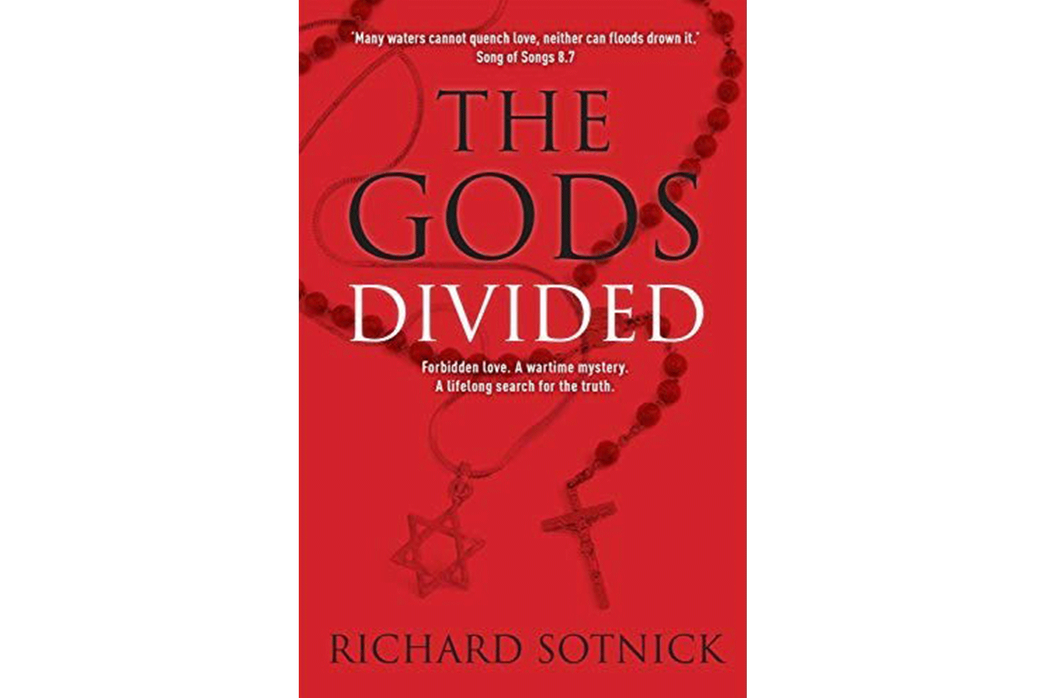 Book cover of The God's Divided