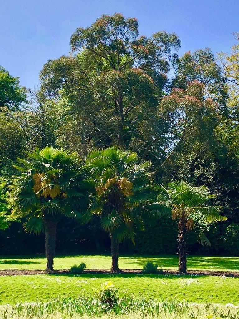 Photograph of Victoria Park