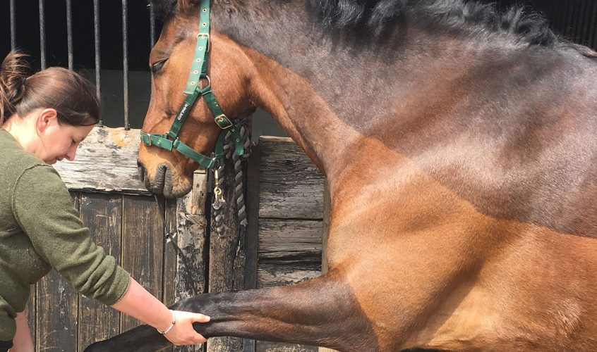 Local woman Julia Empey is an osteopath who helps humans – and animals