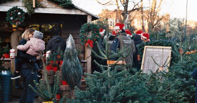 Where to buy Christmas trees in East London