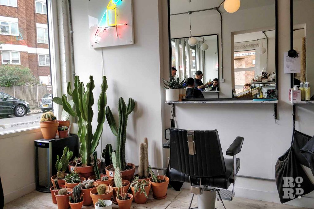 Cactuses in the inside of The Canary hairdressing salon in Bethnal Green