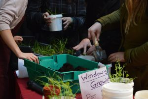 Spring Gathering & Food Growing - WEN