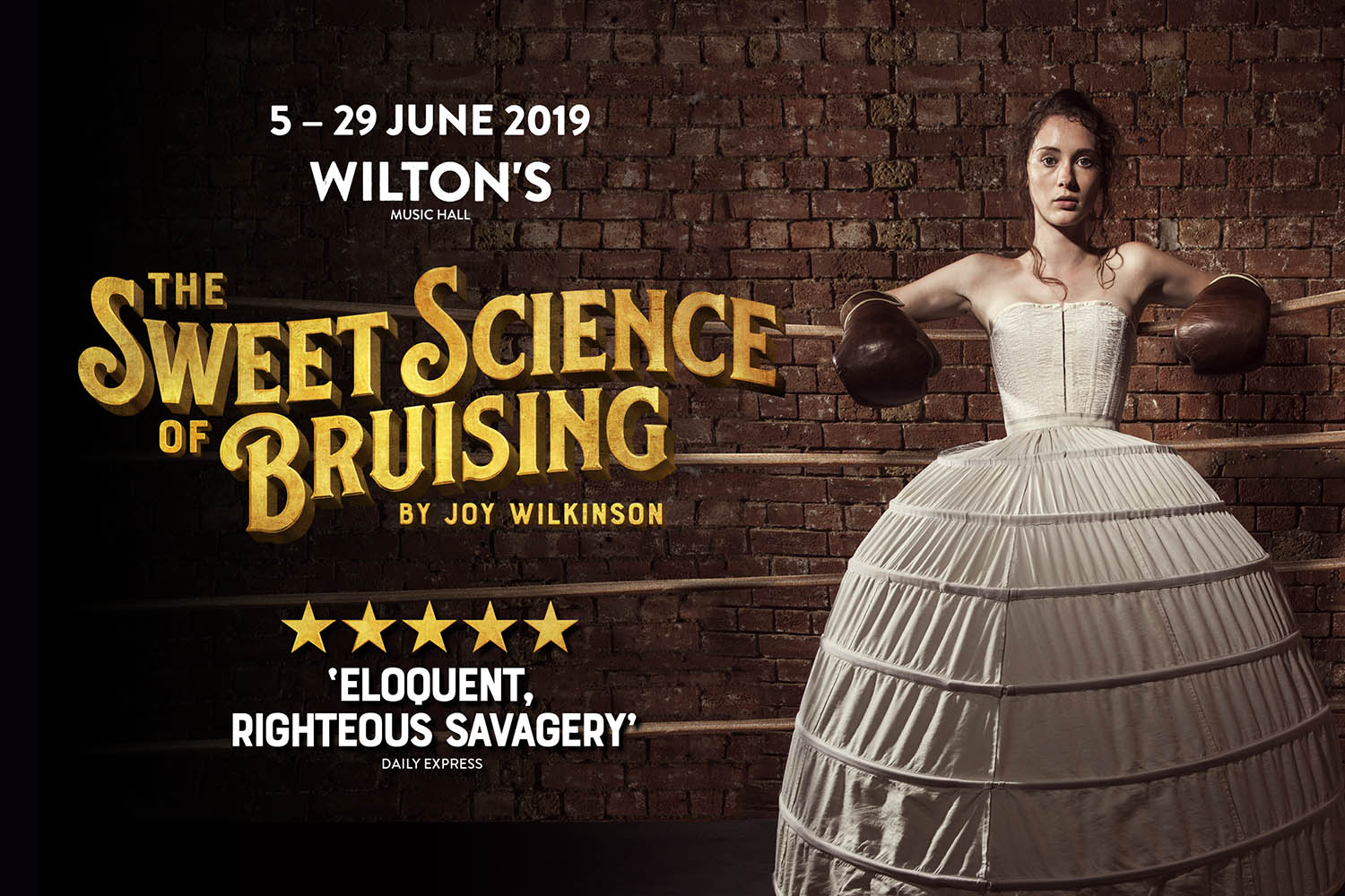 Promo image for The Sweet Science of Bruising play at Wilton's Music Hall