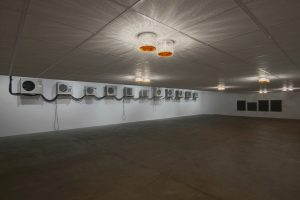 Ima Abasi Okon exhibition at Chisenhale Gallery