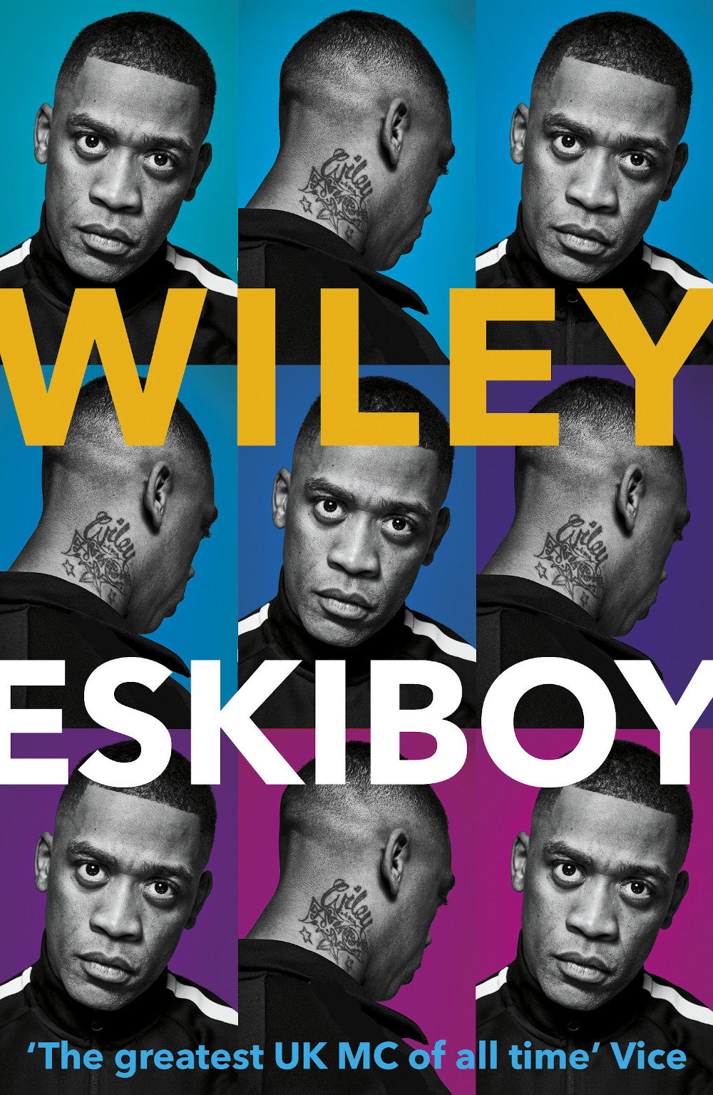 Front cover Wiley book Eskiboy book review