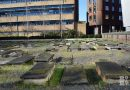The Novo Cemetery: a landmark of Jewish history hidden in plain sight