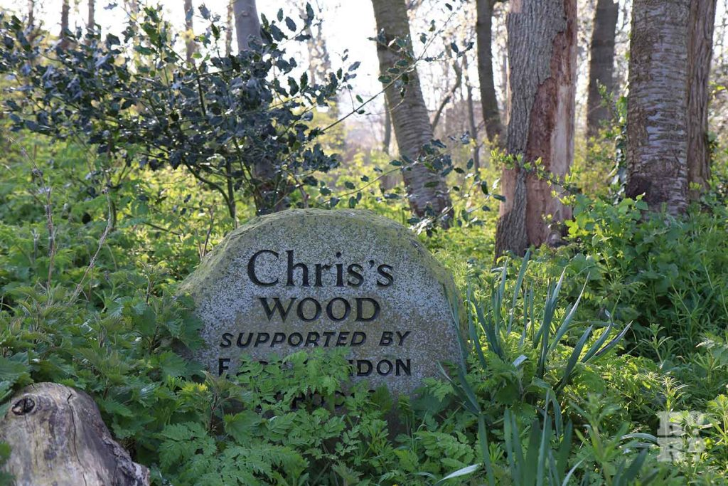 Chris's Wood, Mile End Park, London