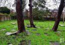 Unearthing the oldest Jewish cemetery in the UK