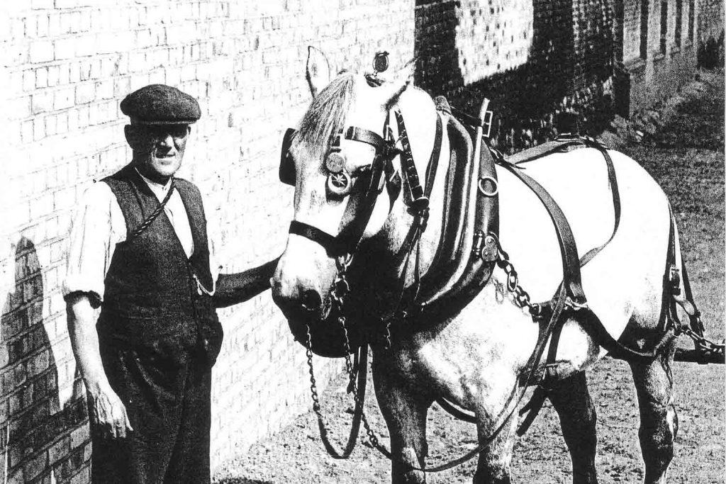 Horse and handler, Regents Canal