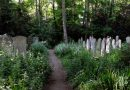 Tower Hamlets Cemetery Park under threat from Bow Common development