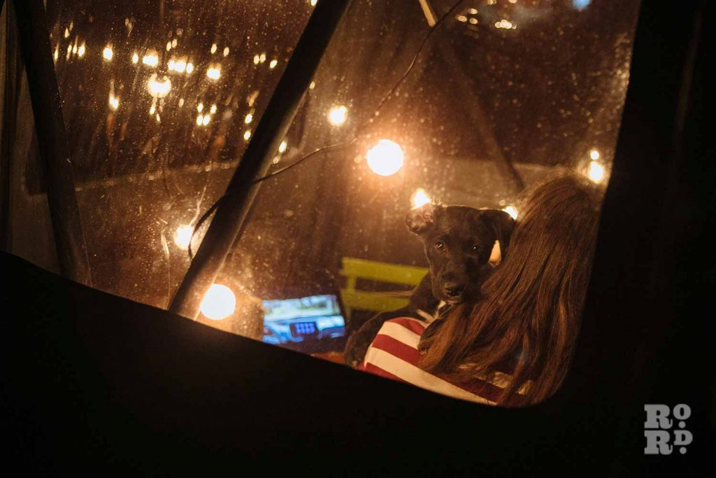 Cuddling the dog - a window into canal boats on Regent's Canal, by photographer Rose Palmer