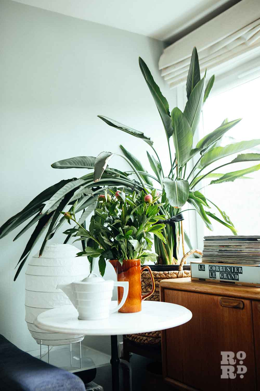 A houseplant and a bunch of peonies in a brown jar, stylist Wojtek van Portek in his Bow home.