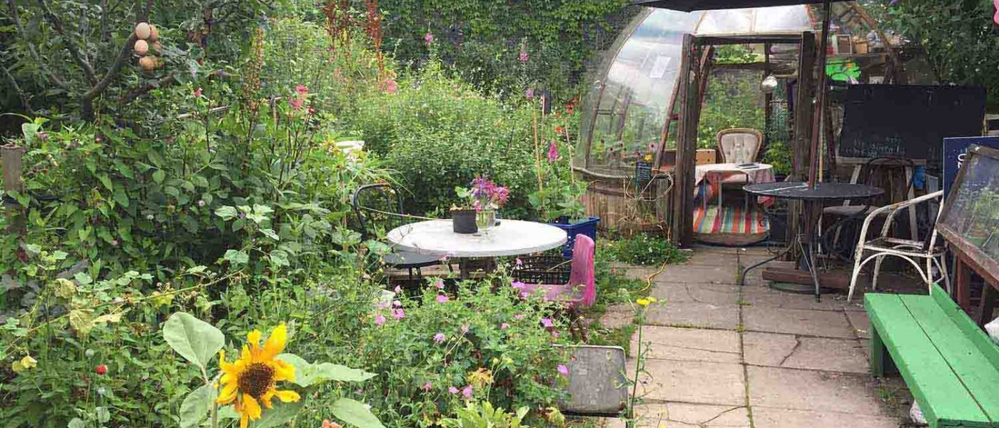 Inside the secret wildflower cottage garden bridging the gap between landlubbers and boaters