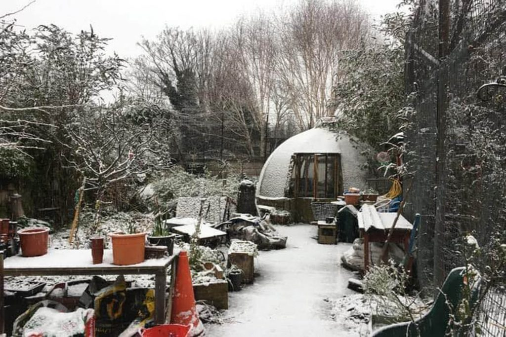 Canal Club Community Garden in the snow