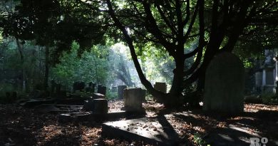 Small shaft of sun beaming onto a grave, in Tower Hamlets Cemetery Park, East London